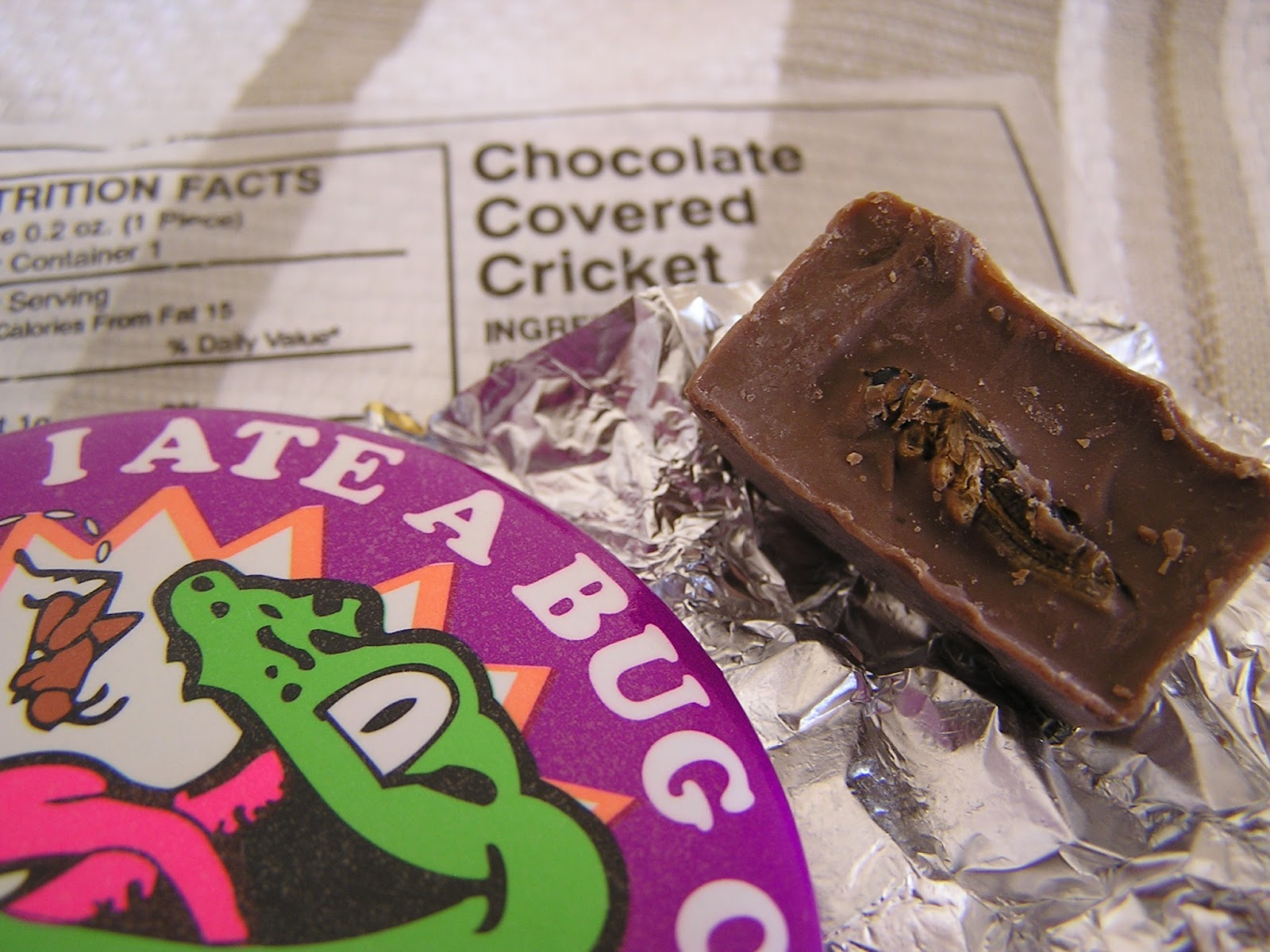 Chocolate Covered Crickets | What the Dog Ate