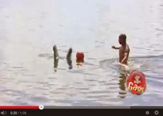 http://funkidos.com/videos-collection/funny-videos/canadian-crocodile-attack