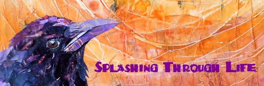 Splashing Through Life