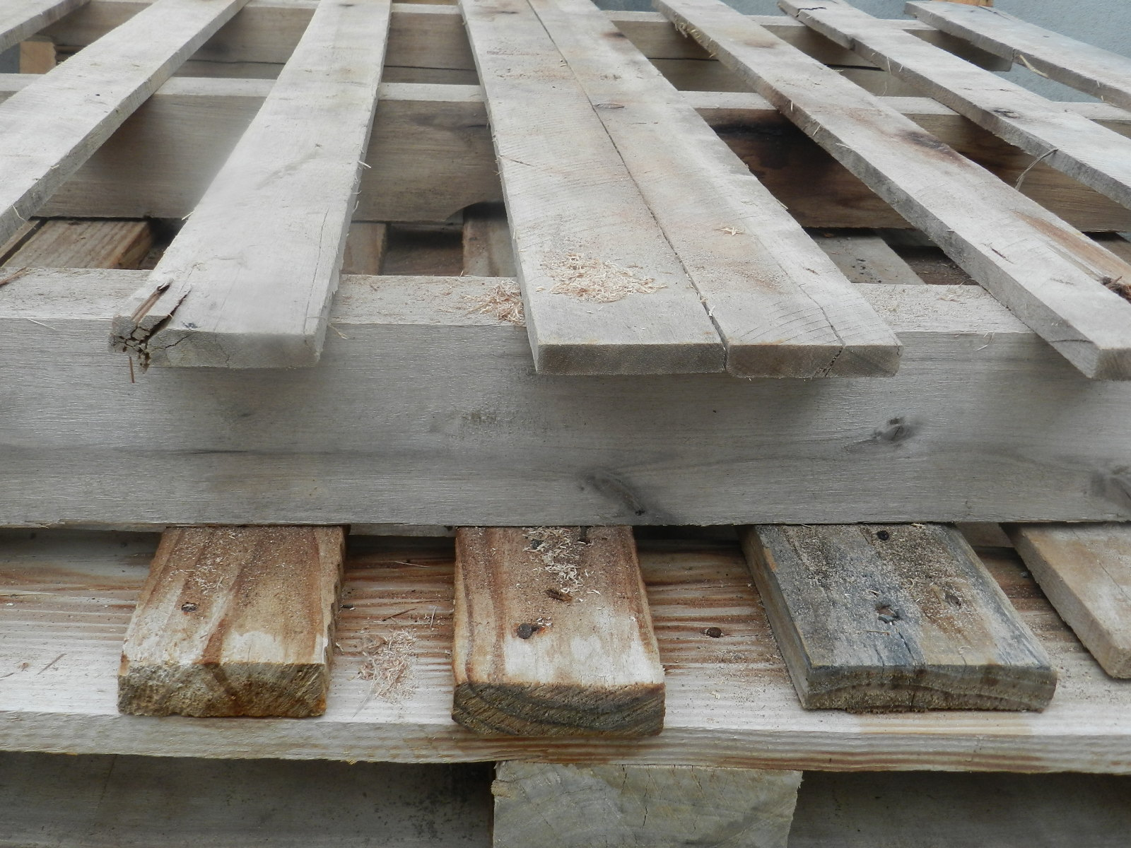 Pensei em fazer um vaso de madeira com estas aqui  #5C4F41 1600x1200