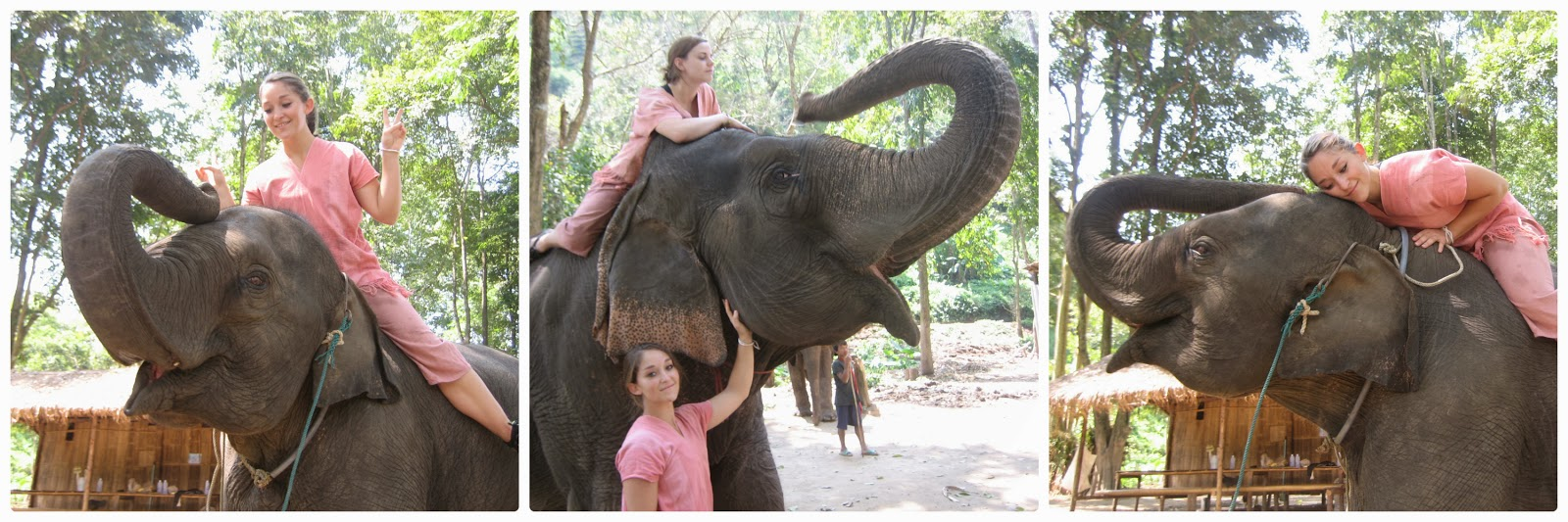 chiang-mai-elephant-camp