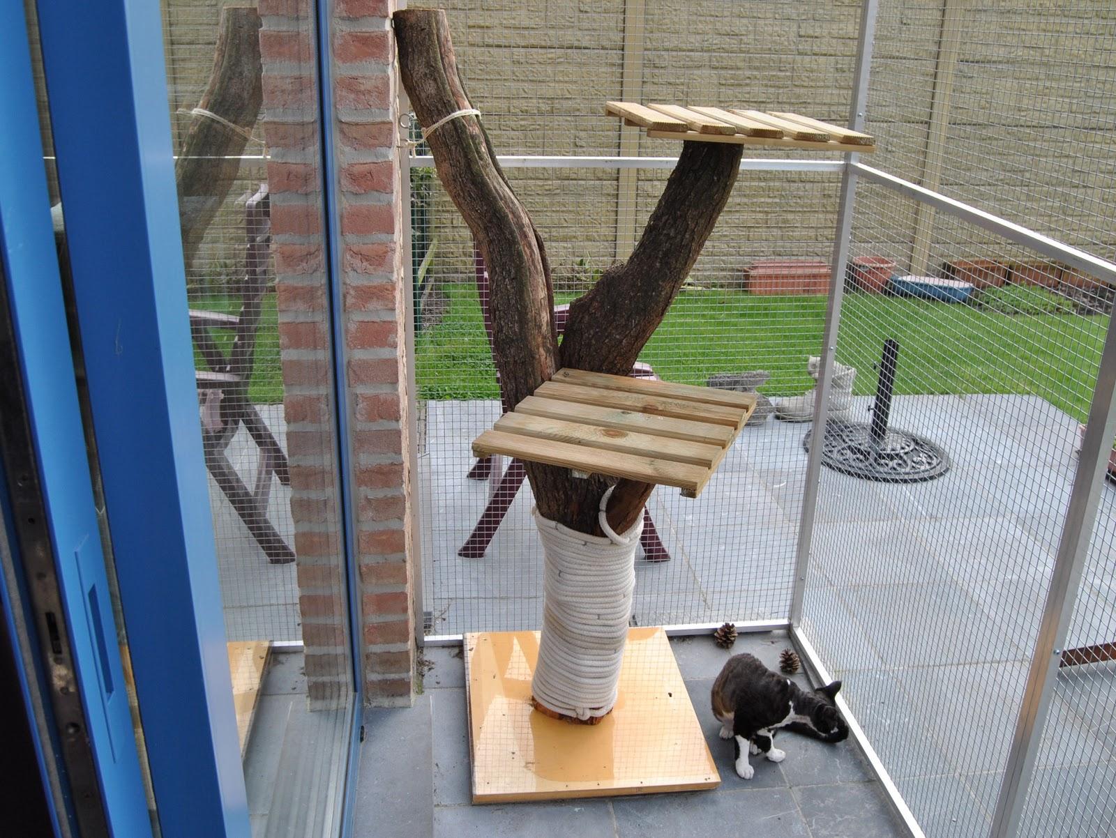 Kaasmetgaten kattenren - Een houten boom maken ...