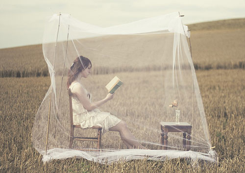 Some books leave us free and some books make us free. ~ Ralph Waldo Emerson