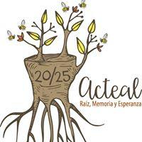 Visita la Página de Las Abejas de Acteal