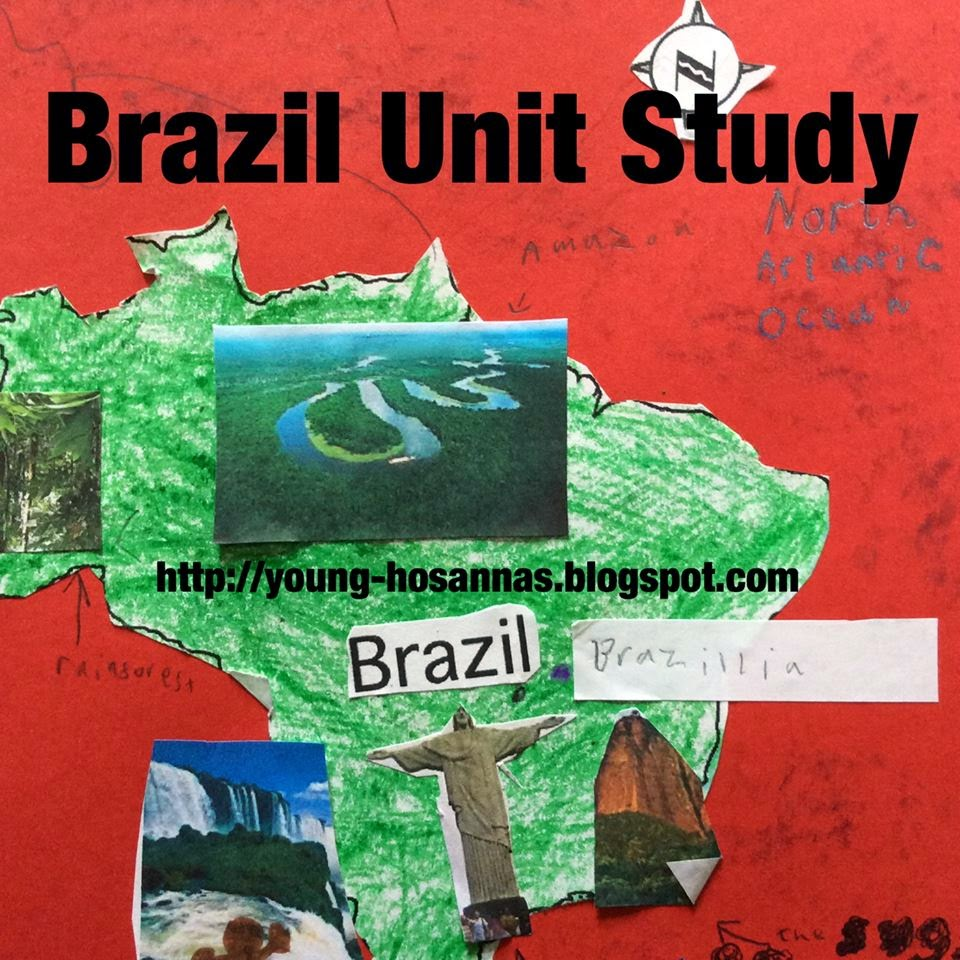 a study of brazil Brazil covers nearly half of south america and is the continent's largest nation it extends 2,965 mi (4,772 km) north-south, 2,691 mi (4,331 km) east-west, and borders every nation on the continent except chile and ecuador.