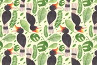 The Tropical Hornbill by Haidi Shabrina