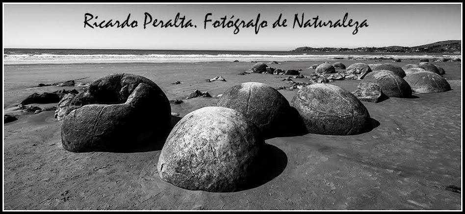 Ricardo Peralta. Fotógrafo de Naturaleza