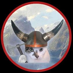 OUR VIKING MASCOT