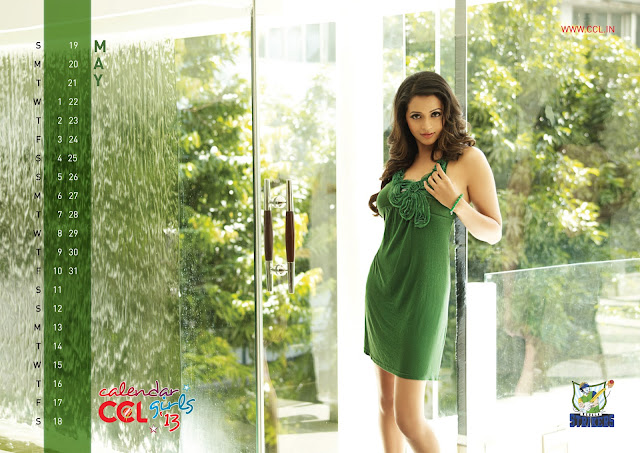 Download CCL Calendar 2013 Wallpapers