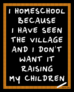 Why Do I Homeschool?...