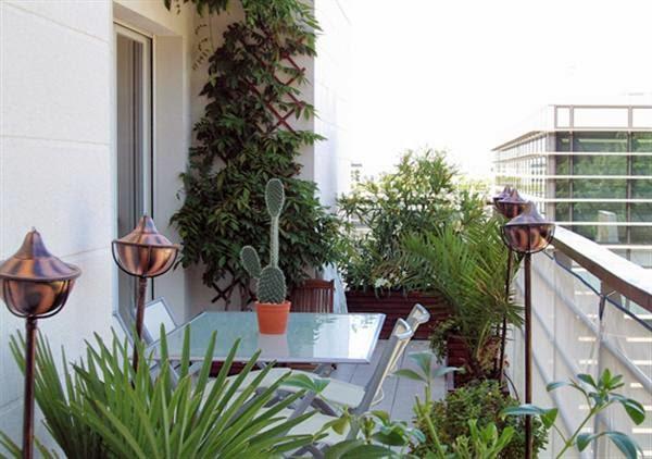 Озеленение балконов и лоджий - домашний hand-made.