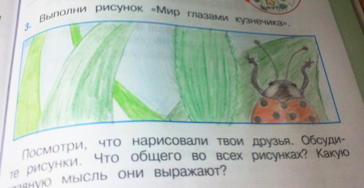 Мир глазами кузнечика рисунок 2 класс и