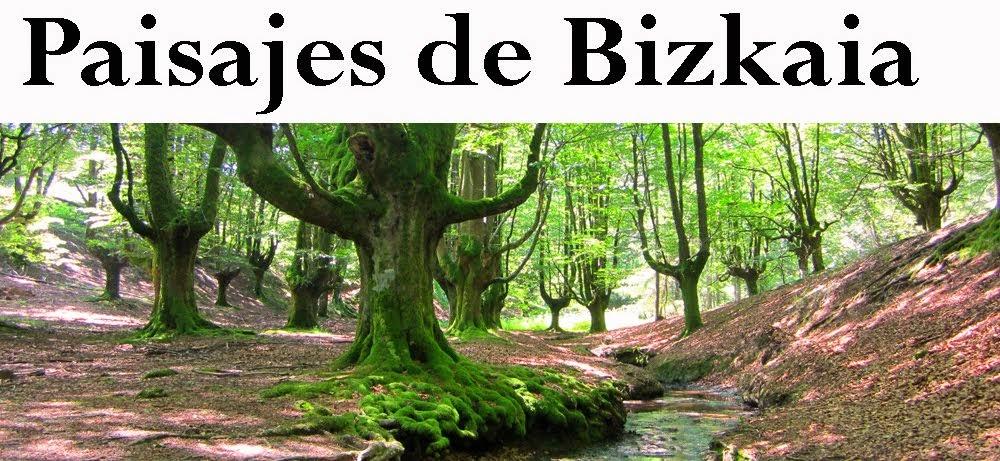 Paisajes de Bizkaia
