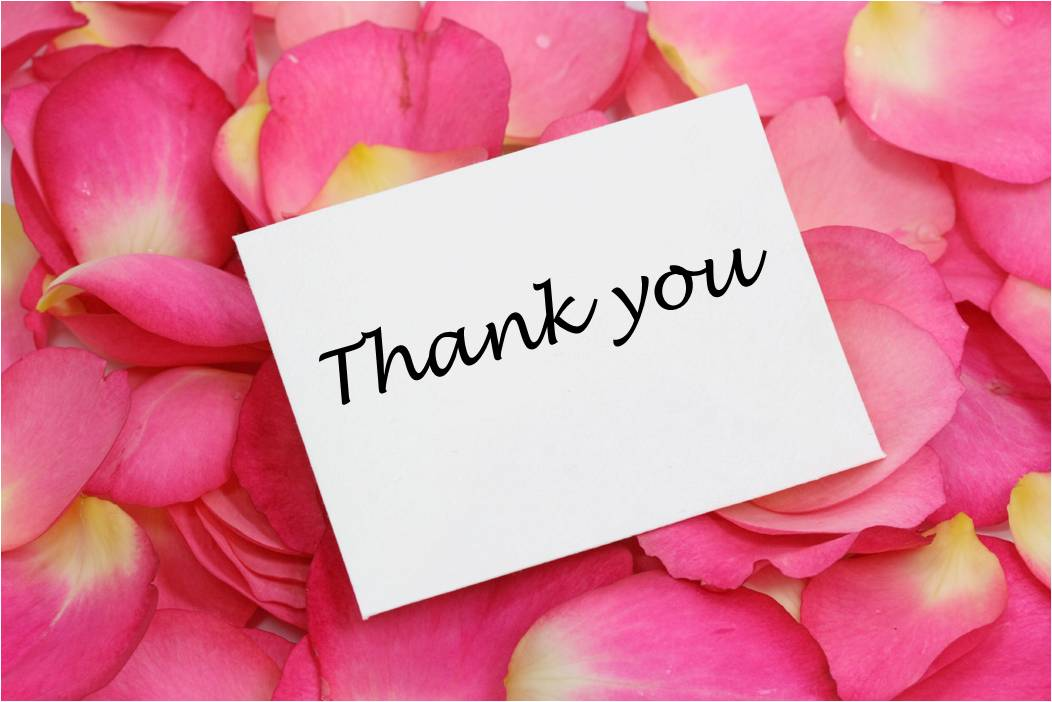 Thank you Pictures Rose Petals