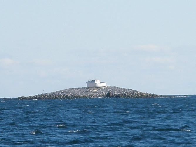 Gulf of Maine