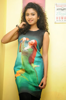 Vishnu Priya in Shadded Chest Printed Gown lovely Beauty at Nenu Naa Friends Movie Success Meet