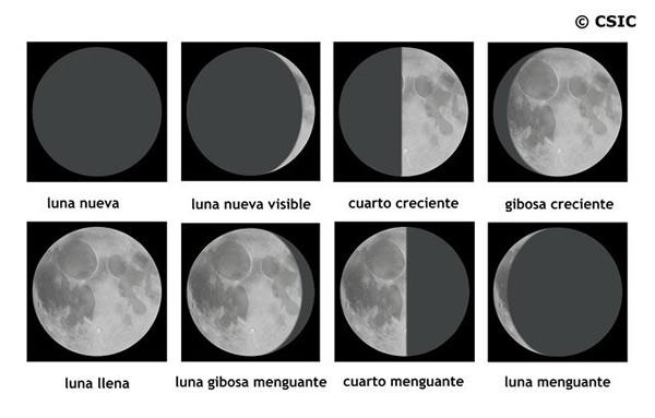 Sistema Solar. Educación en astronomía