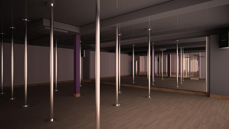 salle de pole dance / artpole studio