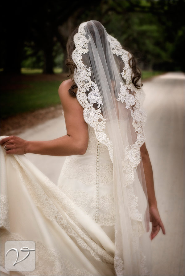 Wedding bells for Wedding dress with veil