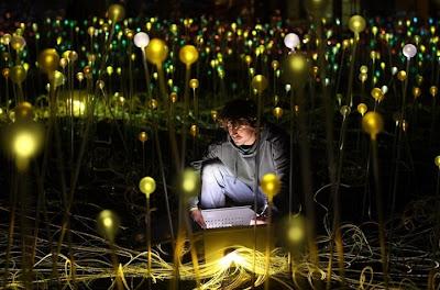 Flores de luz Bruce-munro-field-of-lights8