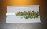 Marijuana Cannabis Joint