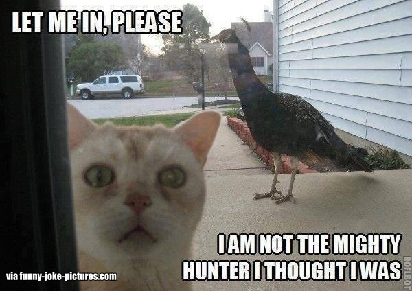 Let me in, please. I am not the mighty hunter I thought I was