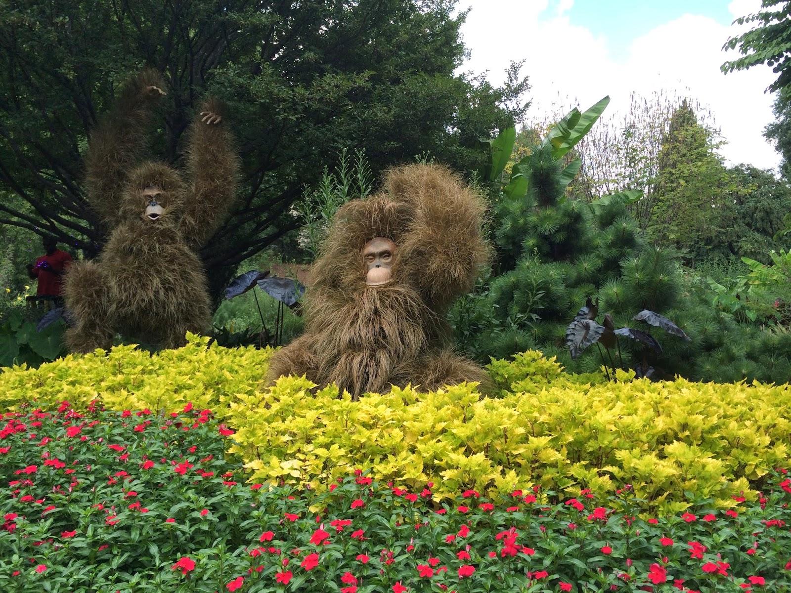 Designing the Nest Nature By Design The Atlanta Botanical Garden