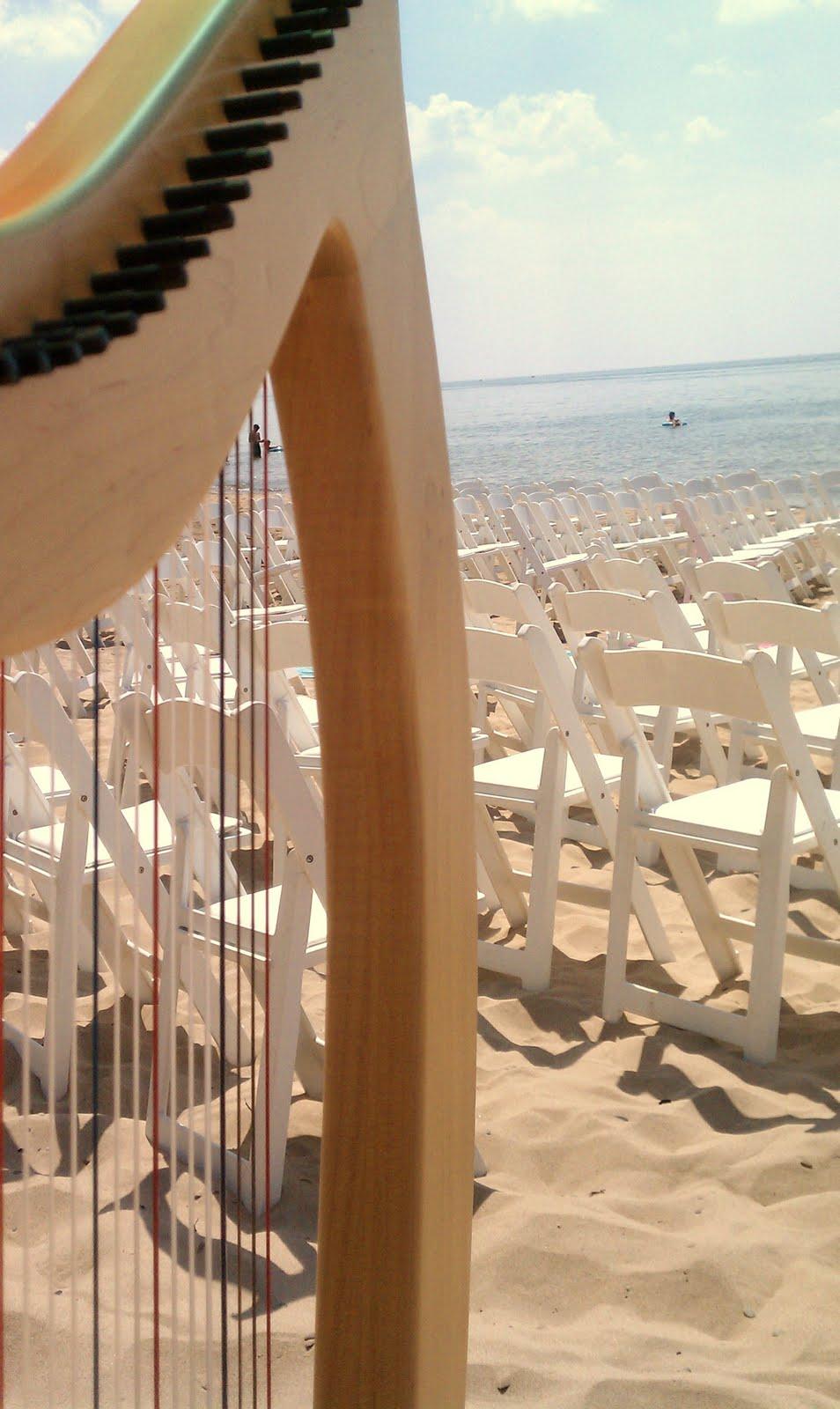 Beach Wedding Music Southwest Michigan Harpist