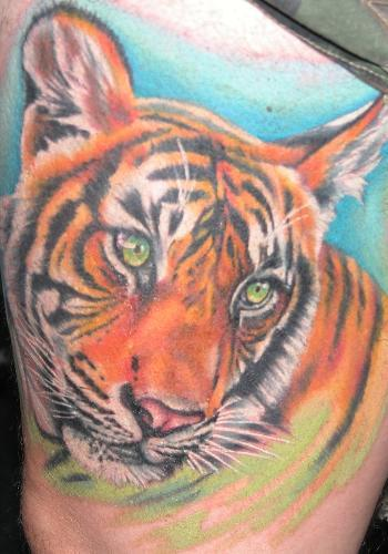 Tiger tattoos for women all about for Tiger tattoos for females