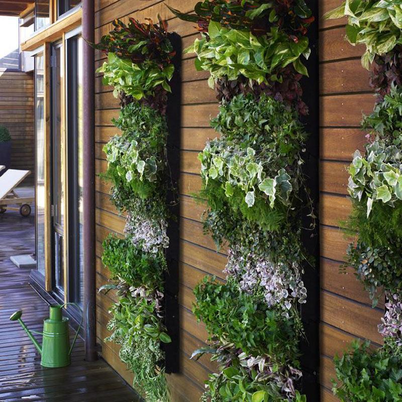 jardim vertical xaxim:Vertical Herb Garden Idea
