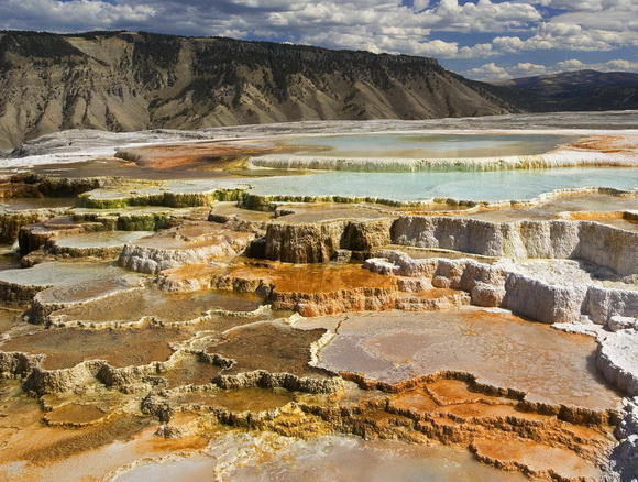 Terraces+Atop+Mammoth+Hot+Springs,+Yellowstone+National+Park,+Wyoming.jpg