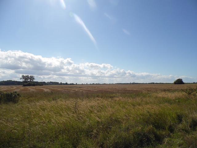 Krajobraz pól przy drodze z Sarbinowa Morskiego do Gąsek w gminie Mielno