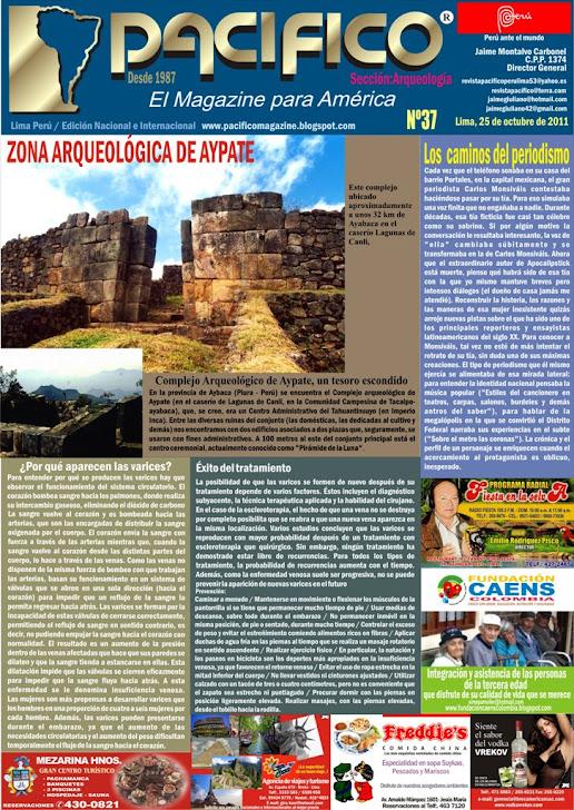 Revista Pacífico Nº 37 Arqueología