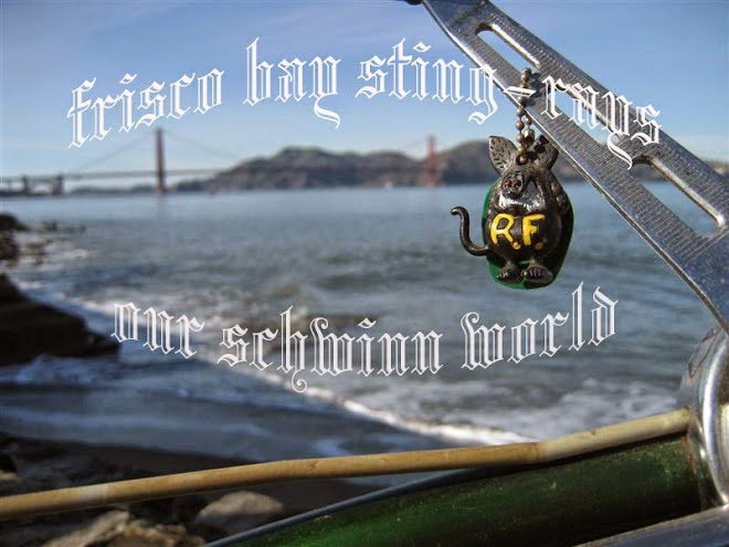 http://frisco-bay-sting-rays.blogspot.com/