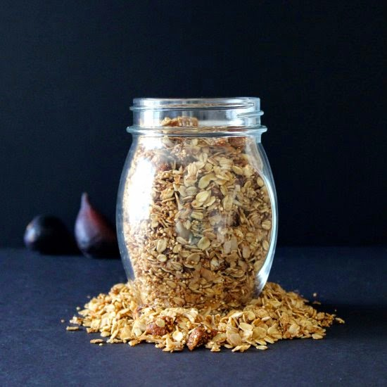 Babe + Bird | Coconut Fig Quinoa Granola
