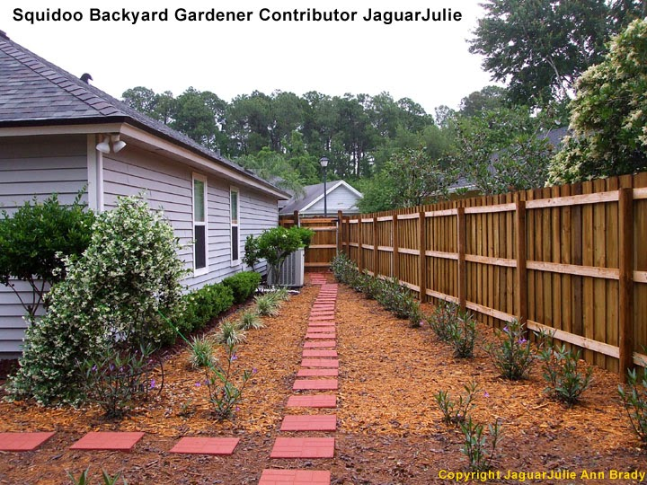 A Massive Side Yard Gardening Project