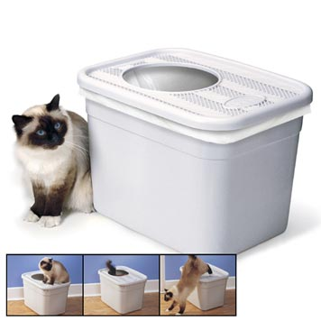 overbudget pet 337 Your House Stinks Part IV