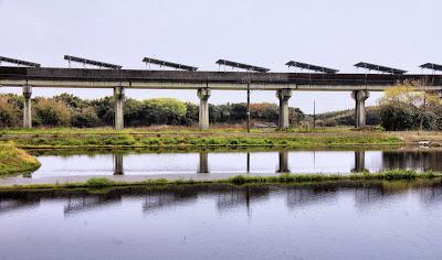 Miyazaki Test for Maglev train