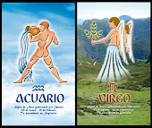 Sun/Moon Signs: Aquarius & Virgo