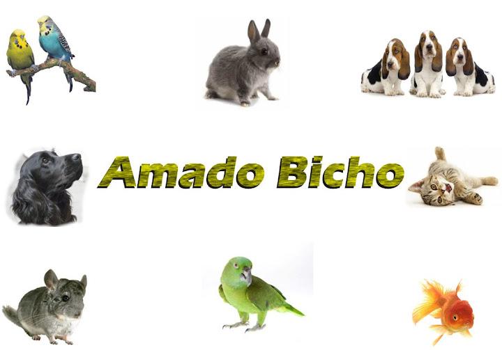 Amado Bicho