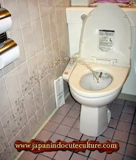mesin cebok toilet
