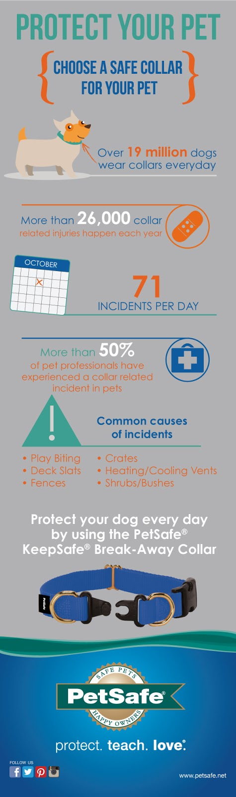 PetSafe's infographic about collar safety and choosing a safe collar for your pet