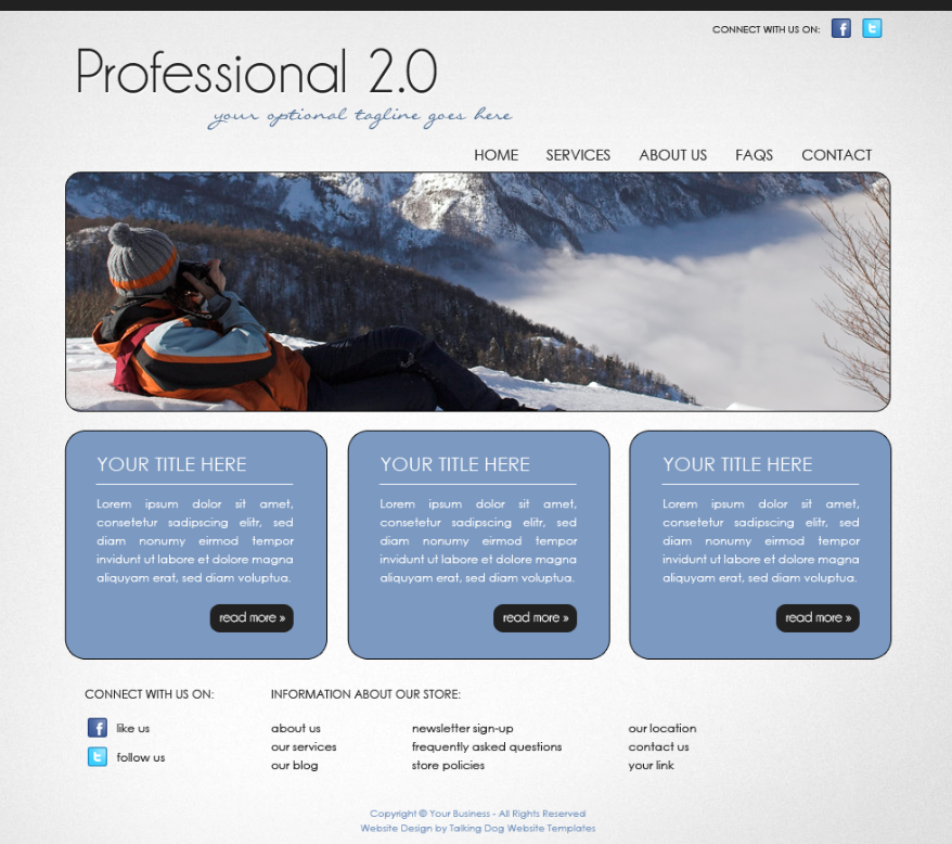 Talking Dog Website Templates: Website Template PROFESSIONAL 2.0