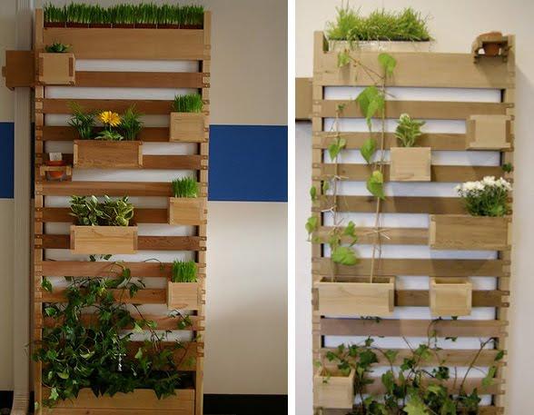ideias baratas para jardim vertical : ideias baratas para jardim vertical:Pallet Herb Garden Indoor