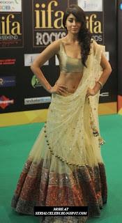 Shriya Saran backless in saree
