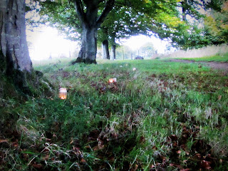 Candles in jars in Woodland Russborough House