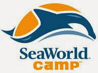 SeaWorld Camp Internship