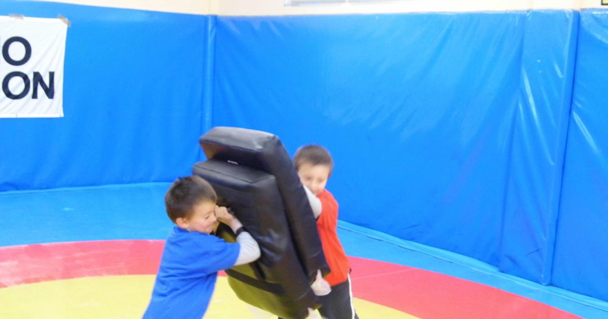 Federacion aragonesa de luchas olimpicas y disciplinas for Gimnasio ranillas