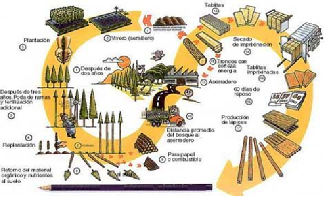 Auladetecnolog a sistemas de producci n for Procesos de produccion de alimentos
