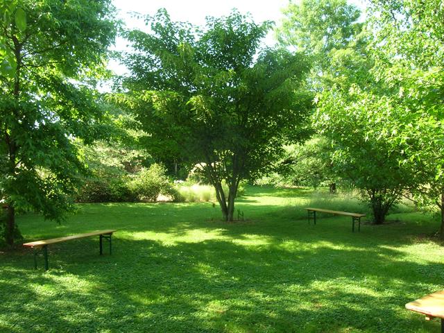 Il giardino segreto jardin de landon for Jardin landon biskra